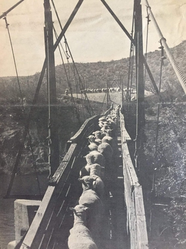 Blue Point bridge, Salt River